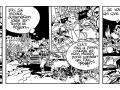 strip 13
